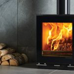 Stovax Vision Small wood burning stove